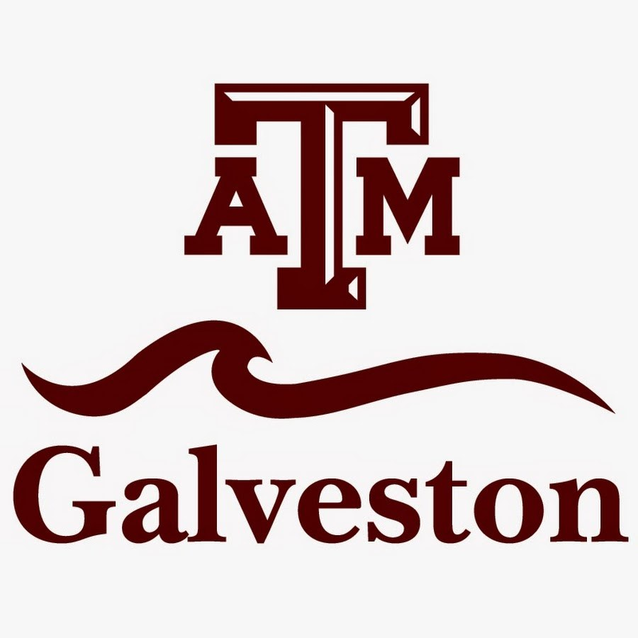 Texas A&M at Galveston